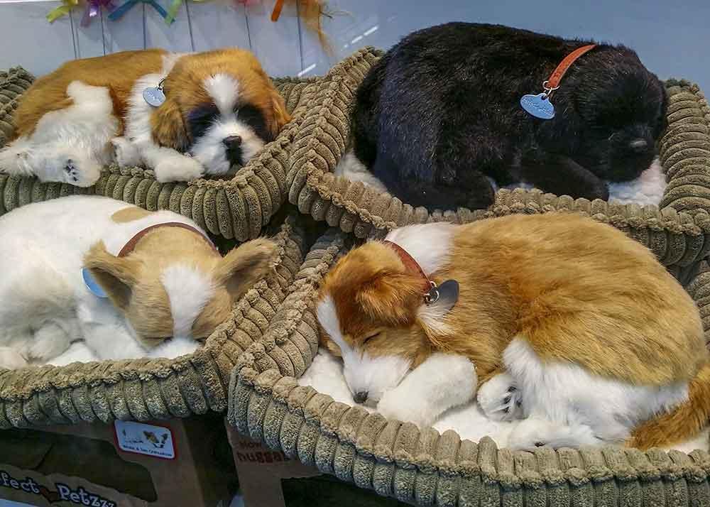 Hundebett Hunde Hundekörbchen